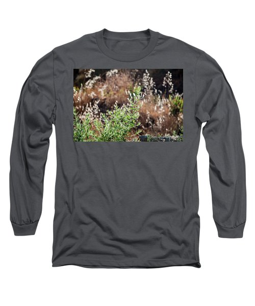 Garden Contre Jour 2 Long Sleeve T-Shirt