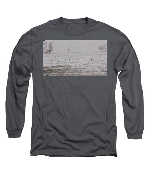 Geese During The Snow Storm Long Sleeve T-Shirt