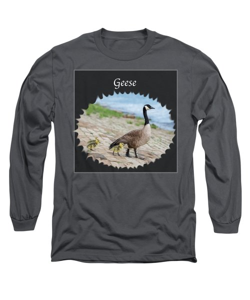 Geese In The Clouds Long Sleeve T-Shirt