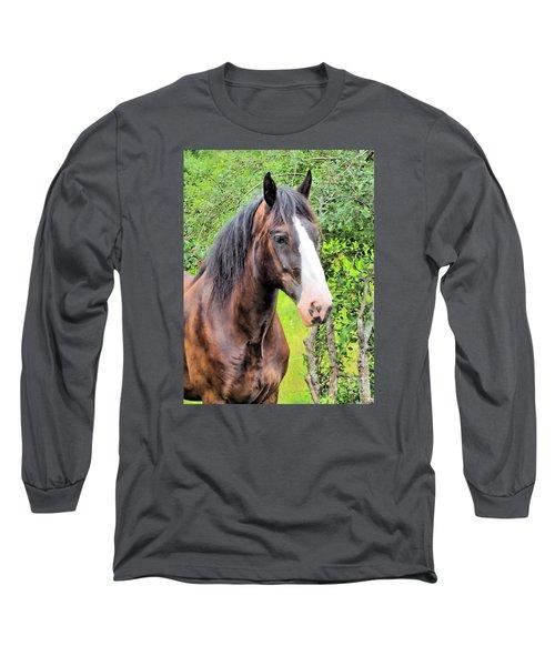 Gentle Soul Long Sleeve T-Shirt by Elizabeth Dow