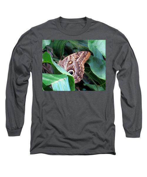 Giant Owl Butterfly Long Sleeve T-Shirt by Betty Buller Whitehead