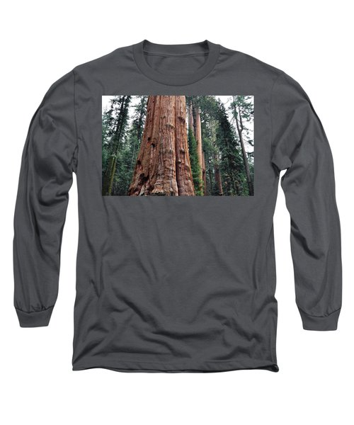 Long Sleeve T-Shirt featuring the photograph Giant Sequoia II by Kyle Hanson