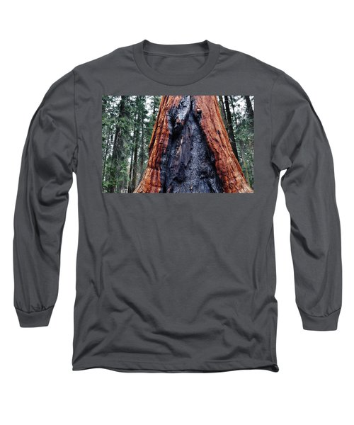 Long Sleeve T-Shirt featuring the photograph Giant Sequoia by Kyle Hanson