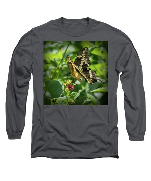 Giant Swallowtail On Lantana Long Sleeve T-Shirt