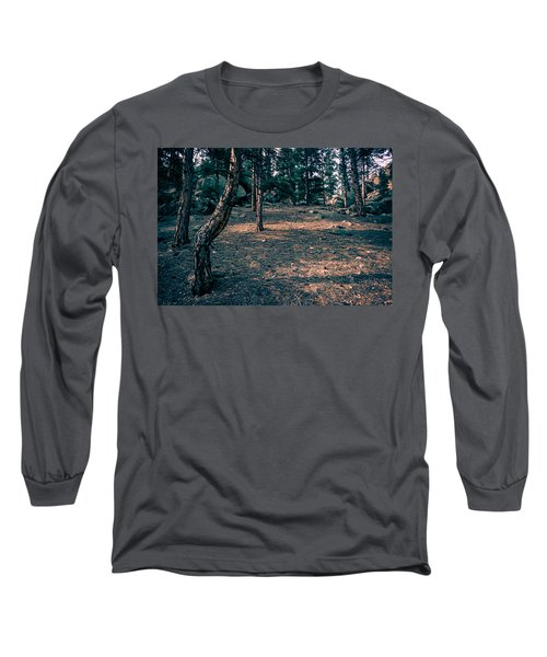 Glade In The Forest Of Colorado Long Sleeve T-Shirt by John Brink