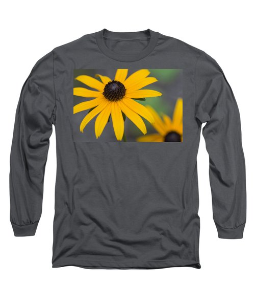 Gloriosa Daisies Long Sleeve T-Shirt by Arlene Carmel