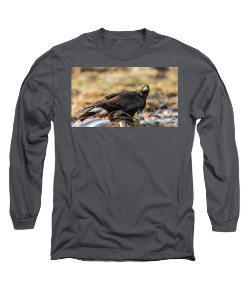 Golden Eagle's Glance Long Sleeve T-Shirt by Torbjorn Swenelius
