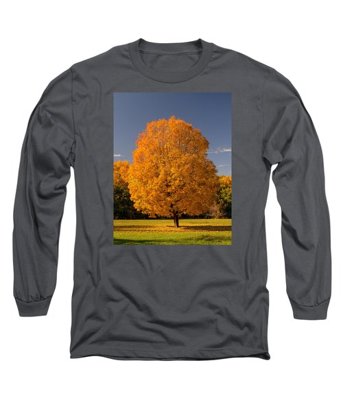 Long Sleeve T-Shirt featuring the photograph Golden Tree Of Autumn by Gary Slawsky