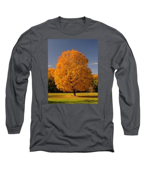 Golden Tree Of Autumn Long Sleeve T-Shirt by Gary Slawsky