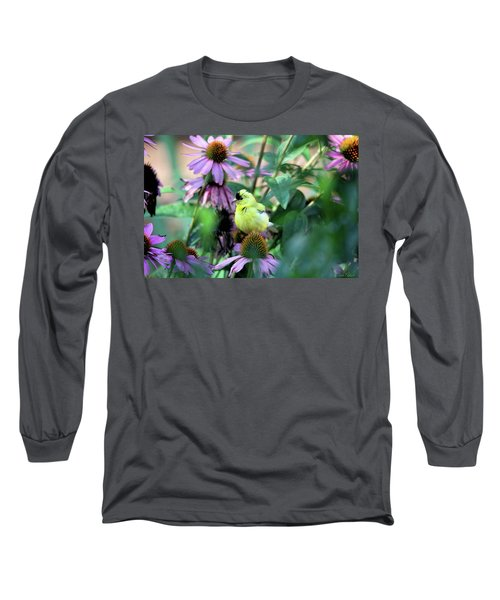 Goldfinch On Coneflowers Long Sleeve T-Shirt