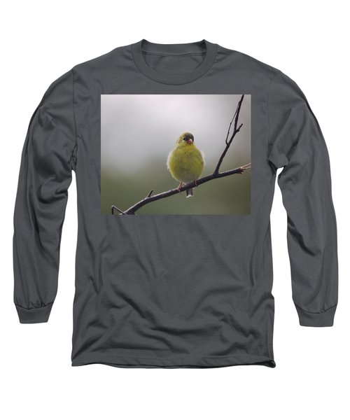 Long Sleeve T-Shirt featuring the photograph Goldfinch Puffball by Susan Capuano