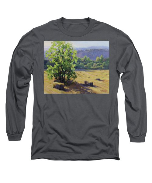 Good Day's Work Long Sleeve T-Shirt by Karen Ilari