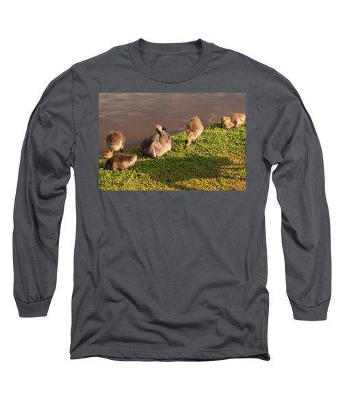 Goslings Basking In The Sunset Long Sleeve T-Shirt