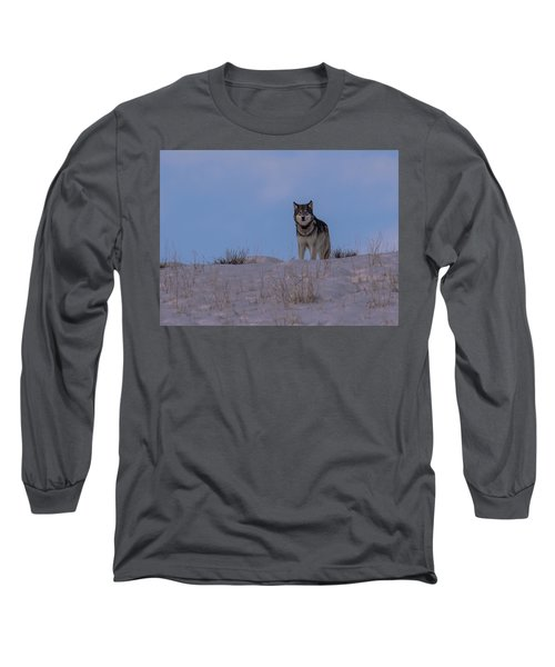 Got You Covered Long Sleeve T-Shirt
