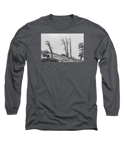 Granite Staitcase Long Sleeve T-Shirt