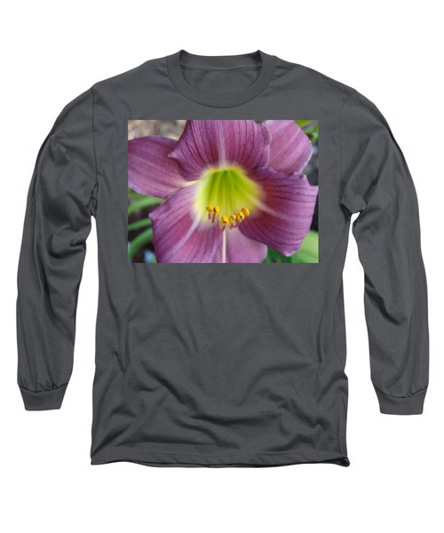 Grape Purple Daylilies  Long Sleeve T-Shirt