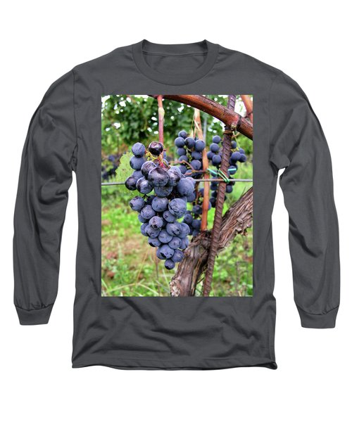 Grape Vine Long Sleeve T-Shirt
