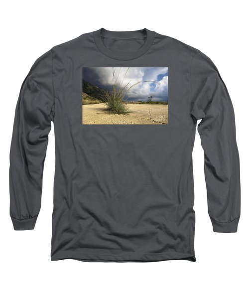 Grass Growing Out Of Crack In Tarmac Long Sleeve T-Shirt