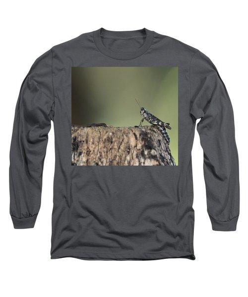 Grasshopper Great River New York Long Sleeve T-Shirt by Bob Savage