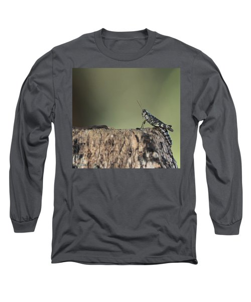 Grasshopper Great River New York Long Sleeve T-Shirt