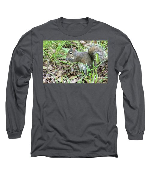 Gray Squirrel Eating Long Sleeve T-Shirt