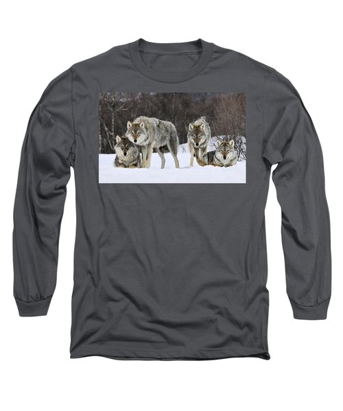 Gray Wolves Norway Long Sleeve T-Shirt