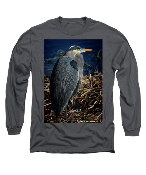 Long Sleeve T-Shirt featuring the photograph Great Blue Heron 2 by Randy Hall