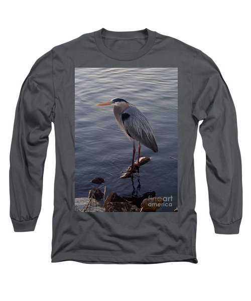 Long Sleeve T-Shirt featuring the photograph Great Blue Heron At Evening by Carol  Bradley
