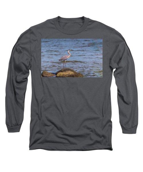 Great Blue Heron Gaze Long Sleeve T-Shirt