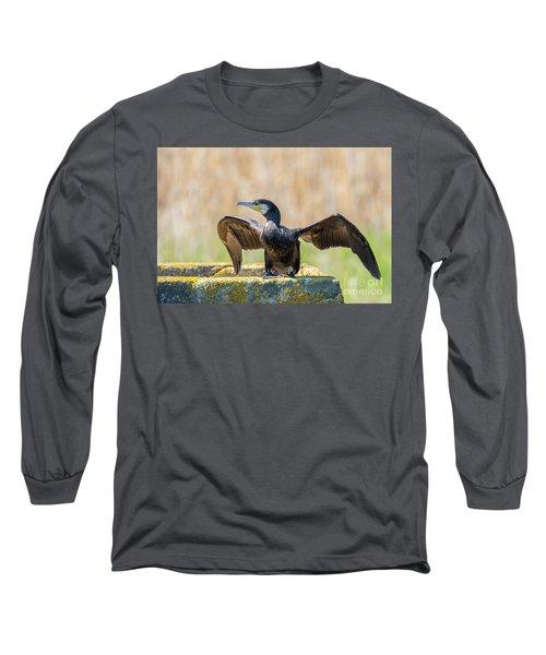 Great Cormorant - Phalacrocorax Carbo Long Sleeve T-Shirt