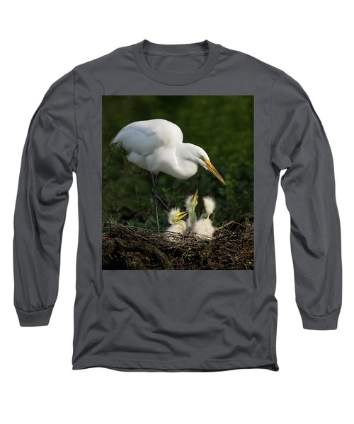 Great Egret With Chicks Long Sleeve T-Shirt