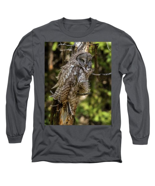Great Grey Owl In Windy Spring Long Sleeve T-Shirt