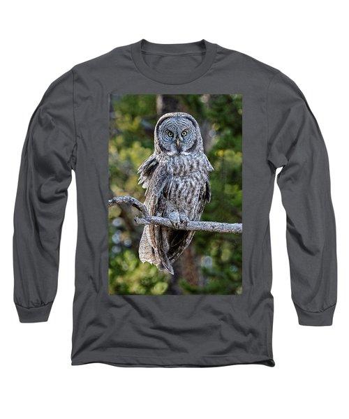 Great Grey Owl Yellowstone Long Sleeve T-Shirt