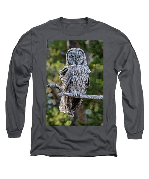 Great Grey Owl Yellowstone Long Sleeve T-Shirt