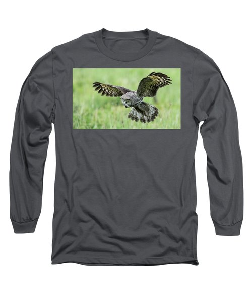 Great Grey's Focused Gaze Long Sleeve T-Shirt