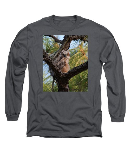 Great Horned Owlet Long Sleeve T-Shirt by Paul Rebmann