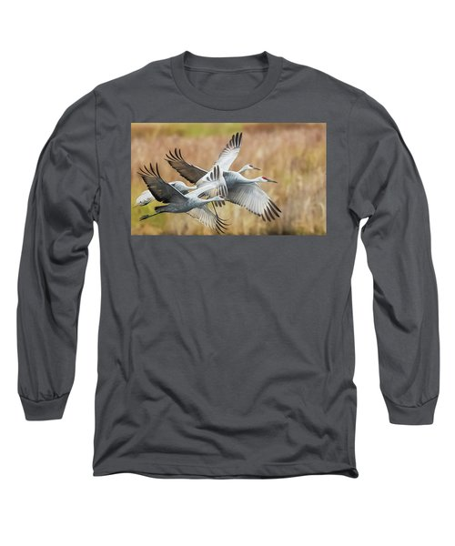 Great Migration  Long Sleeve T-Shirt