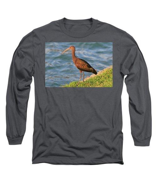 Green Ibis 4 Long Sleeve T-Shirt
