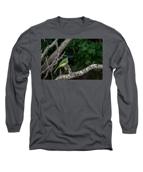 Green Jay Long Sleeve T-Shirt