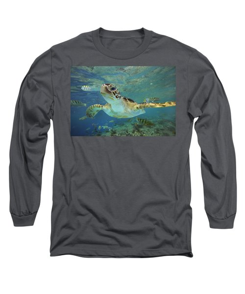 Green Sea Turtle Chelonia Mydas Long Sleeve T-Shirt