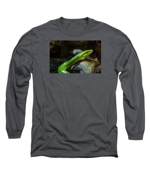 Green Snake Long Sleeve T-Shirt by Daniel Precht