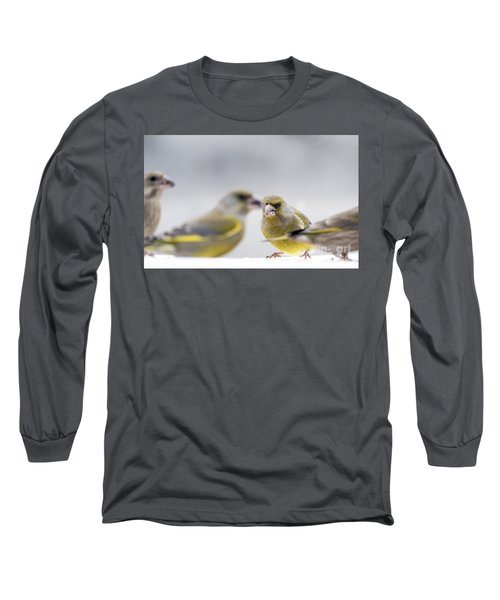Greenfinches Long Sleeve T-Shirt