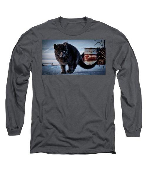 Grey Cat, Grey Mood Long Sleeve T-Shirt