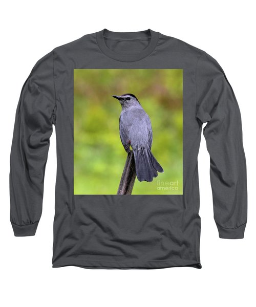 Long Sleeve T-Shirt featuring the photograph Grey Catbird by Debbie Stahre