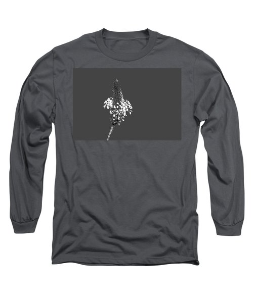 Grey Plaintain Long Sleeve T-Shirt