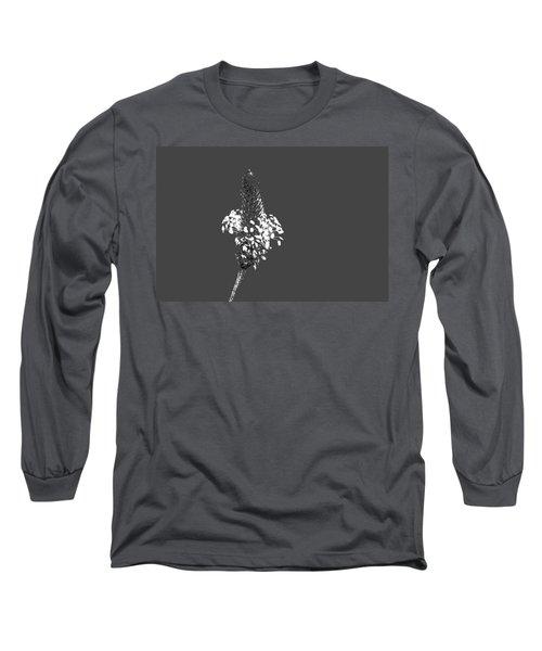 Grey Plaintain Long Sleeve T-Shirt by Richard Patmore