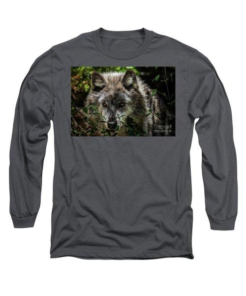 Grey Wolf Long Sleeve T-Shirt by Brad Allen Fine Art