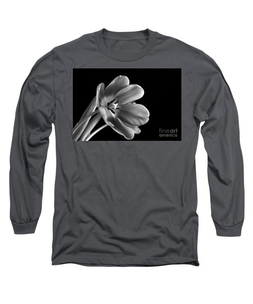 Grieving Again Long Sleeve T-Shirt