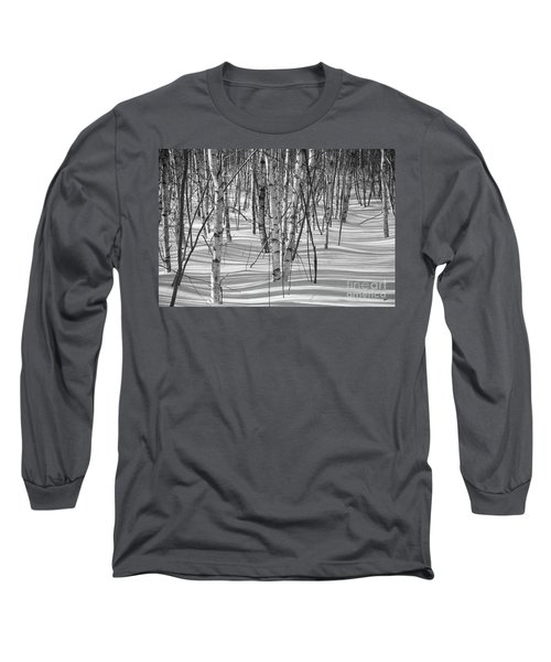 Group Of White Birches Long Sleeve T-Shirt