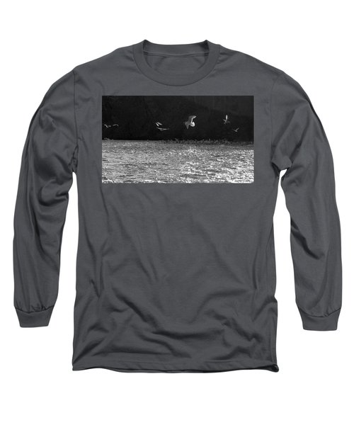 Gulls On The River Long Sleeve T-Shirt